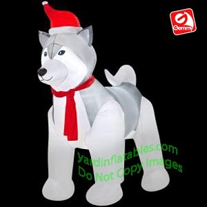 Christmas Husky Wearing Santa Hat