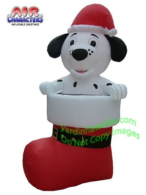 Dalmatian Puppy in Stocking