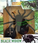 RC Black Widow Spider