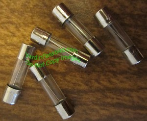 5 Pack of Replacement Fuses